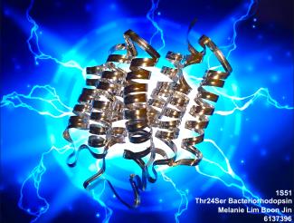Melanie_Bacteriorhodopsin_physicalmodel