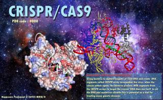 Napassorn_CRISPR_Poster