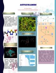Poster-acetazolamide
